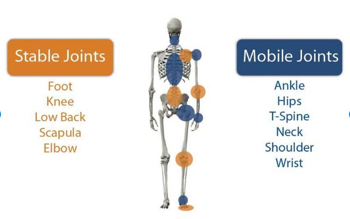 Simple diagram explaining the joint-by-joint concept